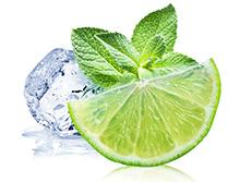 Diretor da Saggio explica os perigos de consumir bebidas com gelo e limão – Guia Profissional de Hotelaria e Restaurantes (GPHR)